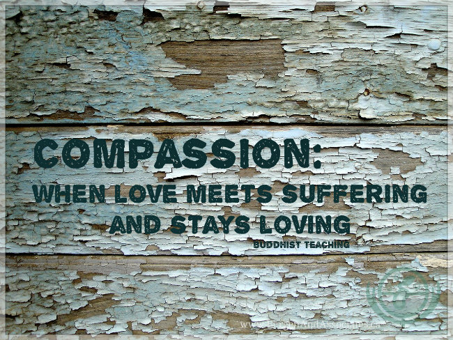 Compassion: When love meets suffering and stays loving. Buddhist teaching. Self compassion