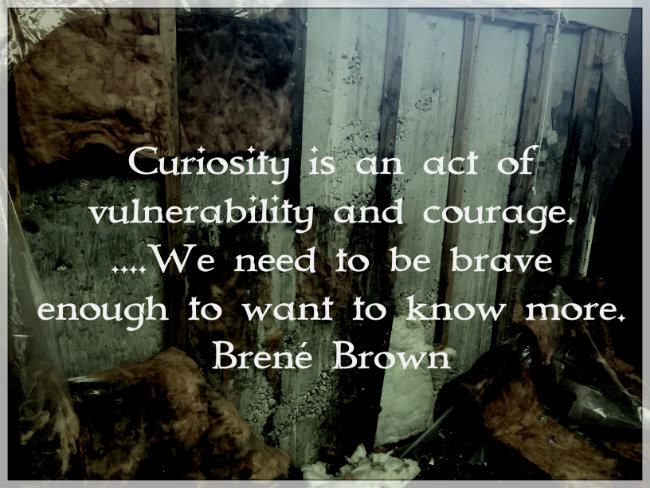 Courage is an act of vulnerability and courage...We need to be brave enough to want to know more. Brené Brown
