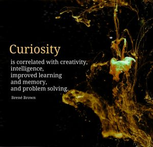 Conexus Counselling poster quote by Brené Brown: Curiosity is correlated with creativity, intelligence, improved learning and memory and problem solving.