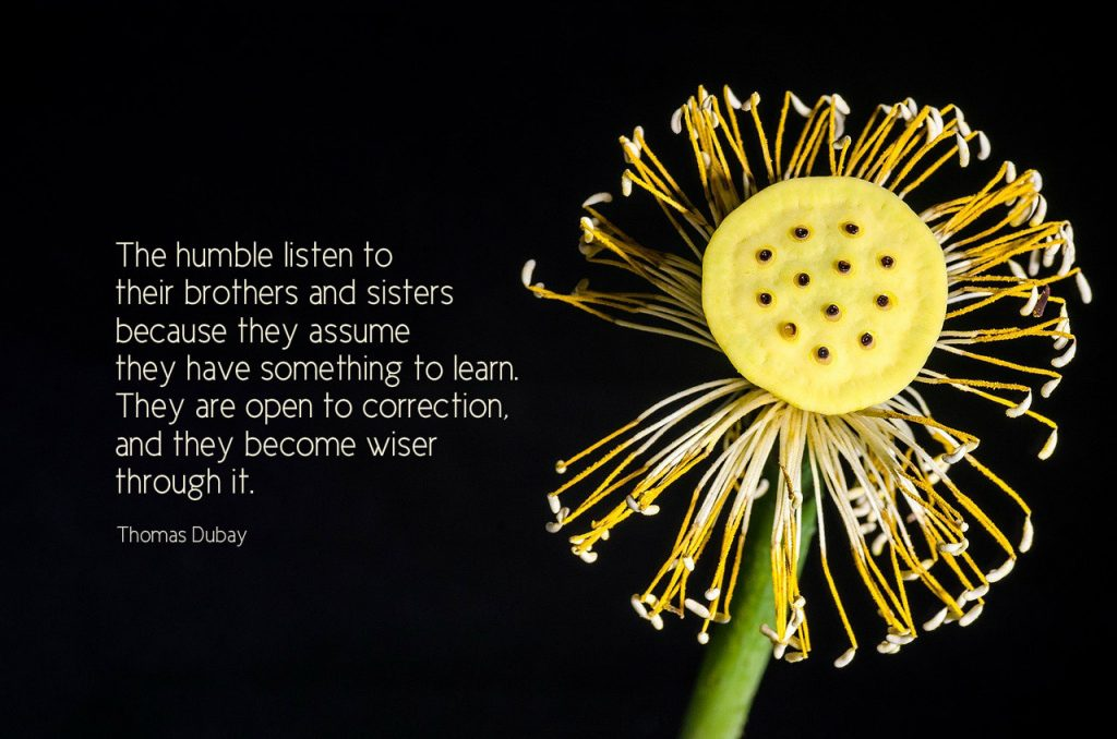 The humble listen to their brothers and sisters because they assume they have something to learn. They are open to correction, and they become wiser through it. Thomas Dubay