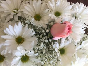 A pink rose nestled amongst baby's breath and white daisies in memory of Janna