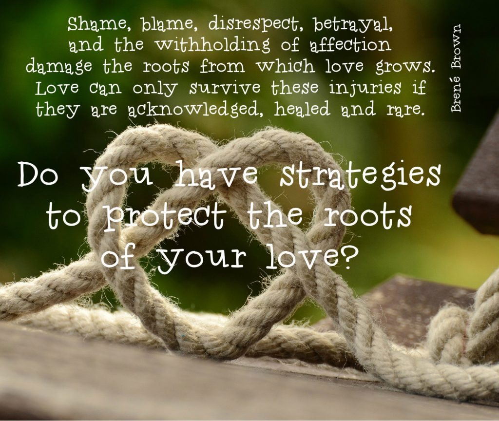 "quote by Brene Brown: ""Shame, blame, disrespect, betrayal, and the withholding of affection damage the roots from which love grows. Love can only survive these injuries if they are acknowledged, healed and rare."" With follow up question: Do you have strategies to protect the roots of your love? on background of rope creating a heart."
