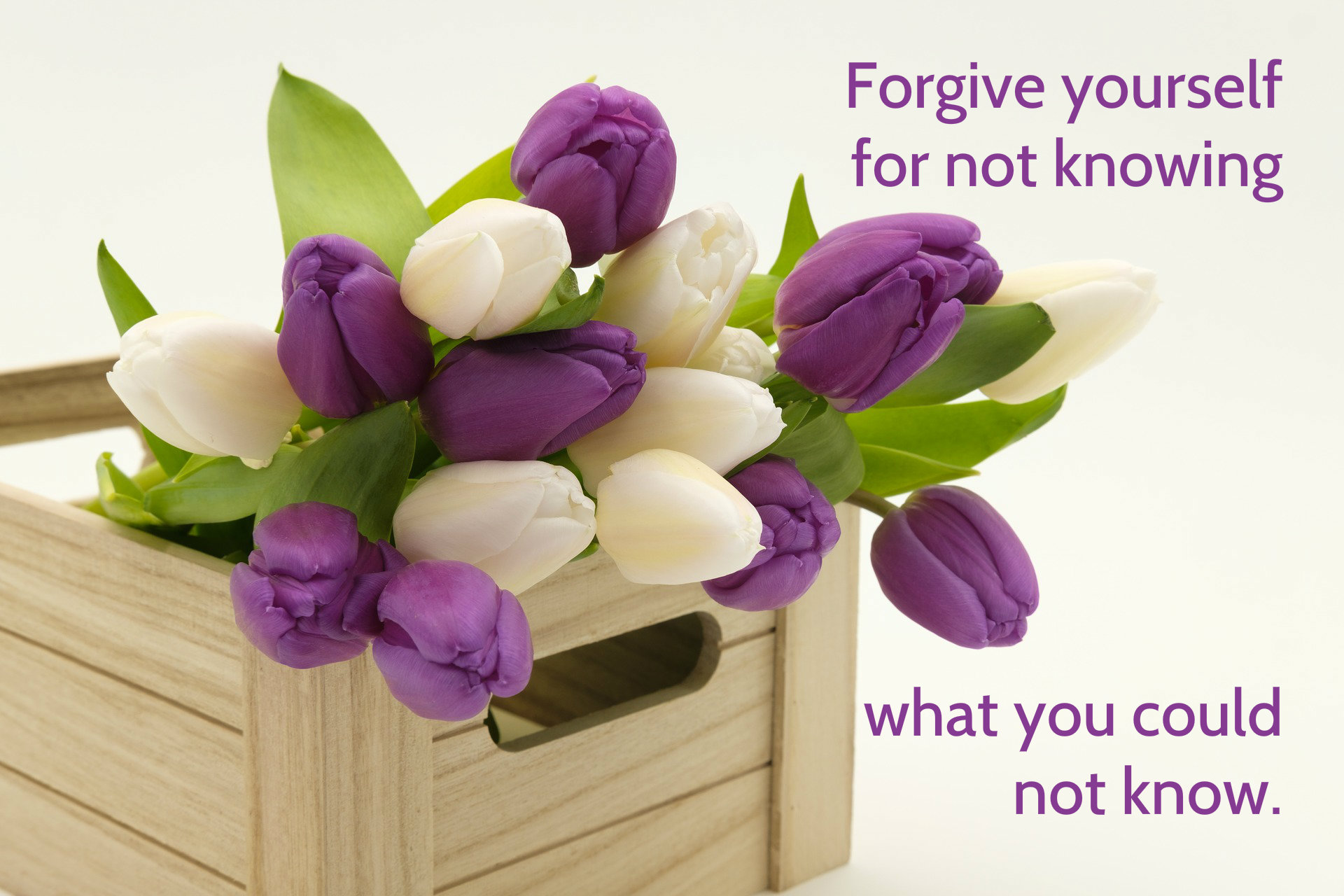 Forgive yourself for not knowing what you could not know quote on background of basket of spring tulips on blog about regret around not removing an icy patch that played a role in a tragedy.