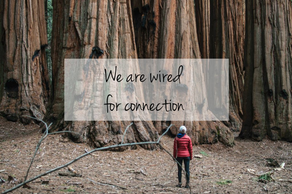 We are wired for connection. Woman gazing admiringly at Sequoia Trees. The tagline of Carolyn Klassen's TEDxWinnipeg talk