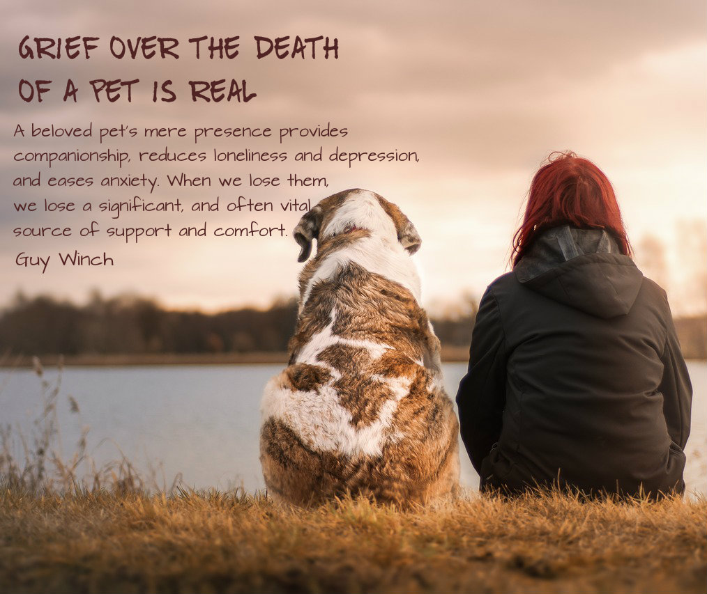 Grief over the loss of a pet is real. On background of a dog and her owner overlooking the pond. Quote from Guy Winch