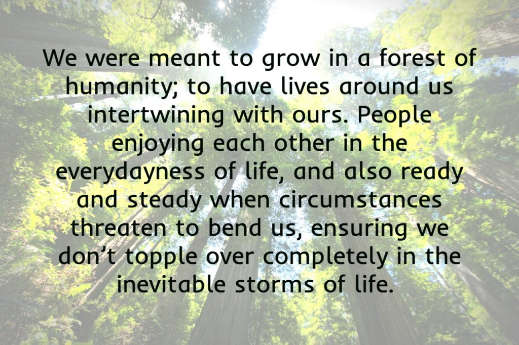 We were meant to grow in a forest of humanity, ready and steady for the storms of life