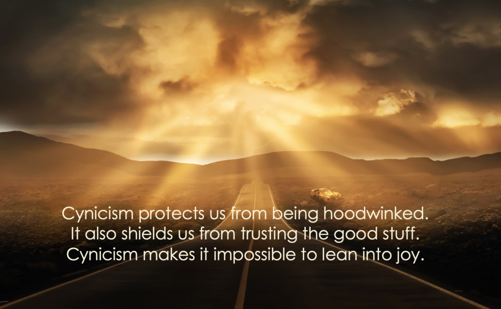 Cynicism protects us from being hurt...it also makes it impossible to trust, to lean into joy.