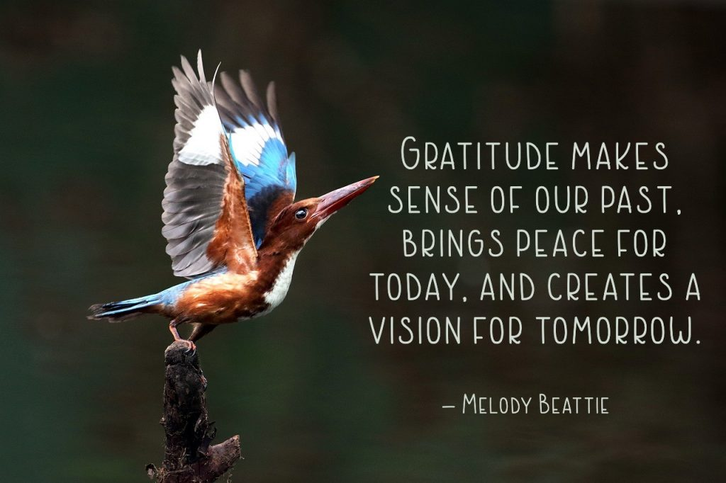 "Gratitude makes sense of our past, brings peace for today, and creates a vision for tomorrow."" – Melody Beattie"