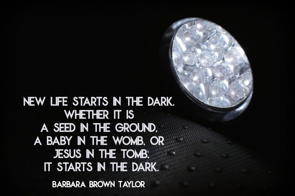 new life starts in the dark. Whether it is a seed in the ground, a baby in the womb, or Jesus in the tomb, it starts in the dark. Barbara Brown Taylor
