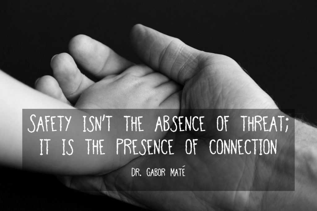 Safety isn't the absence of threat; it is the presence of connection